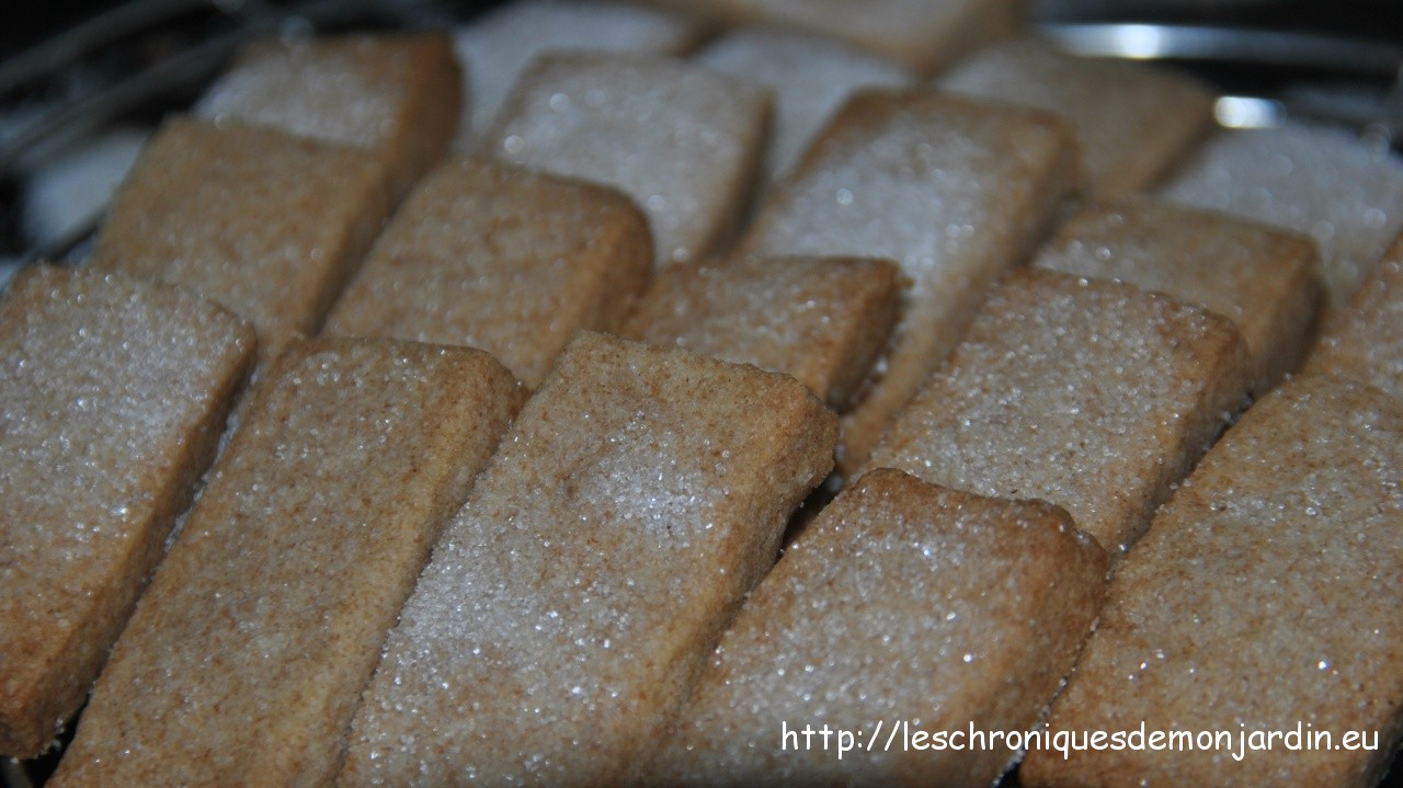 Gourmandises: Shortbreads